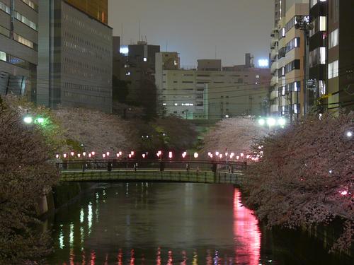 Photo_167